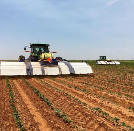 Blue River's new See and Spray machines weed cotton by spraying only weeds using real-time computer vision algorithms.