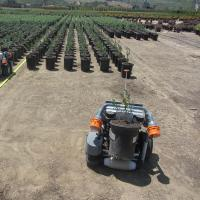 Each HV-100 potted plant-sorting robots from Harvest Automation can pay for itself in two years, the company says. Photo: Harvest Automation