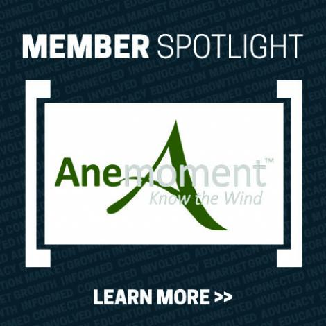 Member Spotlight box - dark blue with white letters that say Member Spotlight, Learn More with the Anemoment logo in the middle (green Ane, moment in white and Know the Wind with a large, green, calligraphy A in background)
